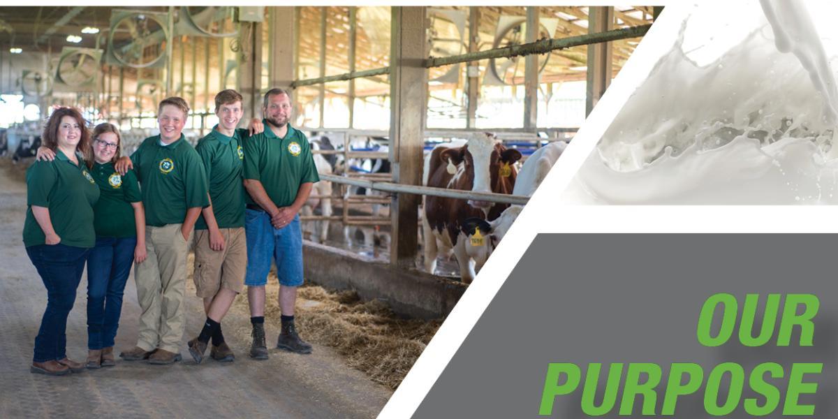 Patterson Farms