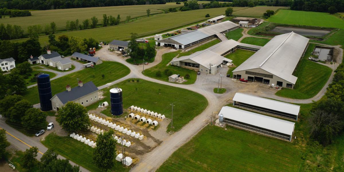 Mulligan Farm