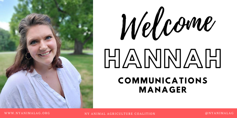 Hannah Johnson Joins NYAAC as Communications Manager