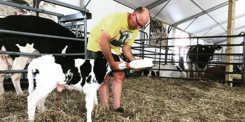 Image for Dairy Farmers Managing Cows and Social Media to Connect with Consumers