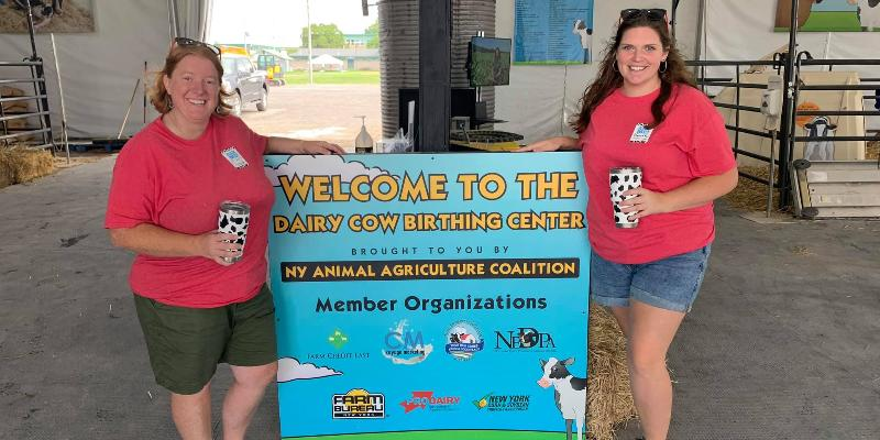 Image for The 2021 Dairy Cow Birthing Center Recap and Results